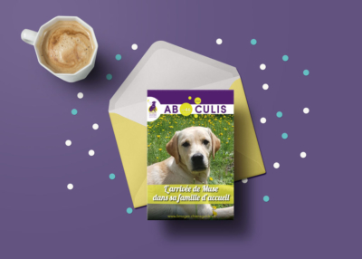 association chiens guides